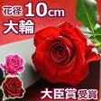バラ1本BOX(花束)結婚記念日 誕生日のプレゼントに妻へ プロポーズに大輪 薔薇を。1輪(一輪 一本) 送料無料