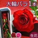 結婚記念日 バラの花束 一輪 ボックス 1本 一本 1輪 薔...