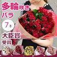 スプレーバラの花束 誕生日 結婚記念日 父の日 退職祝いのプレゼントに。妻へ薔薇の花束を。プロポーズに。ばらを還暦祝いのギフトに 送料無料(7本〜)