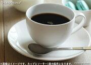 フォルテ コーヒー ソーサー クッキー
