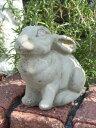 NEW!English Small Rabbit【4月中旬の入荷予定です】