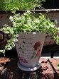 ガーデニング ガーデン 植木鉢 バラ ローズ 雑貨プランター 寄せ植え アンティーク【花遊び】『カラフルローズラウンドポット・ライトピンク』【9月上旬のお届け予定です】