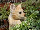 ガーデニング ガーデン ネコ アニマル プランター寄せ植え ハンギング 雑貨 【花遊び】『ハンギング!キャット・茶トラ』