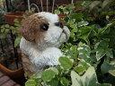 ガーデニング ガーデン いぬ アニマル プランター寄せ植え ハンギング 雑貨 【花遊び】『ハンギング!パピーシーズー』