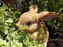 ガーデニング ガーデン うさぎ アニマル プランター寄せ植え ハンギング 雑貨 【花遊び】『ハンギング!ラビット』