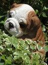ガーデニング ガーデン いぬ アニマル プランター寄せ植え ハンギング 雑貨 【花遊び】『ハンギング!パピーブルドック』
