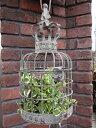 ガゼボ 鳥かご 小鳥 ガーデニング ガーデン雑貨 アンティーク アイアン 寄せ植え【花遊び】『…