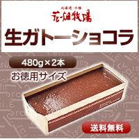 花畑牧場 生ガトーショコラ【お徳用サイズ】