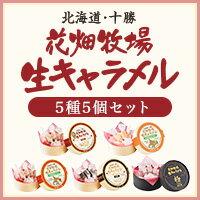 花畑牧場 生キャラメル5種5個セット【送料込み】
