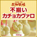 北海道 お土産 花畑牧場 【訳あり】不揃いカチョカヴァロ 5...