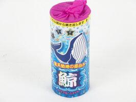 鯨【噴出花火】【2017年新商品】
