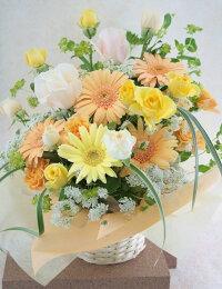 【Today'sアレンジMサイズ】(おまかせアレンジ)【生花】【フラワーアレンジメント】
