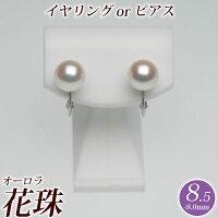 パールイヤリング(またはピアス)8.5mm-9.0mm花珠真珠(オーロラ花珠)ピュアピンク商品番号:S668093
