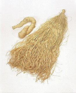 即日 大地農園/マダガスカルラフィア 1巻 N/60750-000リボン ラフィア 手作り 材料の写真