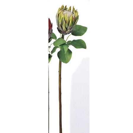 【造花】アスカ/プロテア グリ−ン/A-32746-051A【01】【取寄】 造花(アーティフィシャルフラワー) 造花葉物、フェイクグリーン 多肉植物 手作り 材料
