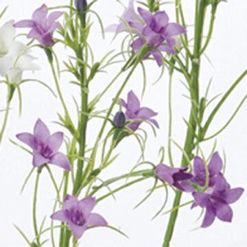 【造花】アスカ/ワイルドカンパニュラ×9つぼみ×4パ−プル/A-32893-007【02】《造花その他のお花》