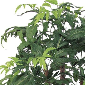 【人工観葉植物】アスカ/アラリアポットグリ−ン/A-50770-051A【02】《造花人工樹木・観葉植物ア~オアラレア》