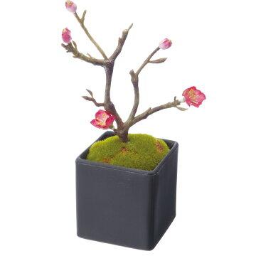 【造花】YDM/梅盆栽