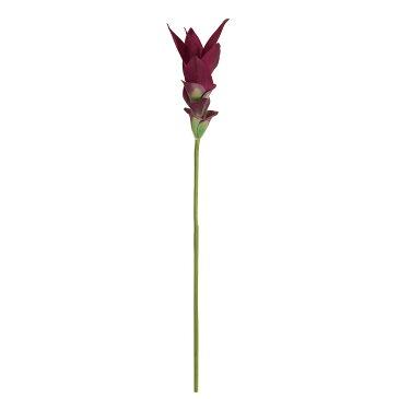 【造花】MAGIQ(東京堂)/インプレスクルクマ #17 ダークパープル/FM009690-017【01】【取寄】《 造花(アーティフィシャルフラワー) 造花 花材「さ行」 ジンジャー 》