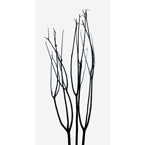 東北花材/ミツマタ 3本入り ブラック/75752【01】【取寄】ドライフラワー ドライ枝物 三又 手作り 材料