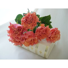 【生花 切り花 切花 バラ ローズ 薔薇 ブライダル 】◆レビューを書いてポイント2倍!◆【生花...