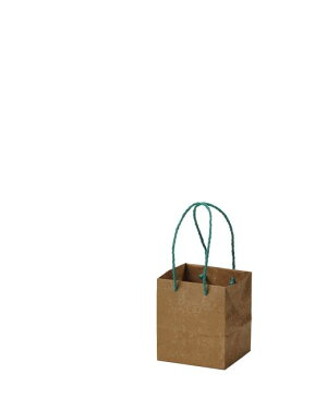 HOSHINO/キャリーバッグ VT−SS/314129【01】【取寄】[25枚]《 ラッピング用品 ・梱包資材 ラッピング袋・梱包袋 手提げ袋 》