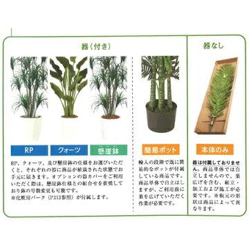 【直送】【人工観葉植物】ベイリーフ