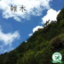 ◆送料無料◆ ムシカリ 苗 【ムシカリ】 ポット苗 (ニーム小袋付き) シンボルツリー 苗木 落葉樹 里山の...