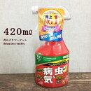 【殺虫殺菌剤】ベニカXファインスプレー420ml