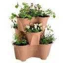 【プラスチック鉢】ハーベリーポット 43型ブラウンまたはグリーンイチゴ栽培にはこれ!【ス...