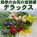 季節のお花をお届けする頒布会です四季のお花の定期便【送料込み】デラックス
