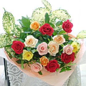 ミックスカラーのバラ15本のギフト用花束【ロングスケール】