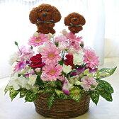 【送料無料/あす楽対応】親子の犬2匹のトピアリー(人形)と季節の花をアレンジしたフラワーギフト【フラワーアレンジメント】Dog's Family(トイプードル)【誕生日や発表会、記念日のお祝いに/出産祝い、新築祝いに/送別会に/お見舞いに】