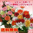 即日発送OK♪季節の花のアレンジ(アレンジメント)【敬老の日|誕生日|発表会|記念日|お祝い|出産...