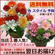 誕生日のお祝いに バレンタインに そのまま飾れる季節の花のフラワーアレンジメント(アレンジメントフラワー)【画像配信】【送料無料/あす楽対応】