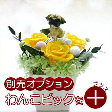 【ギフト用オプション】犬の人形をお花にプラス♪わんこのピック2(チワワ/ダックスフント/シュナウザー/パグ/ブルドッグ/シェパード/ロットワイラー/セントバーナード/ラブラドール・レトリバー/ゴールデン・レトリバー)|誕生日|記念日|お祝い|お見舞い|お供え|