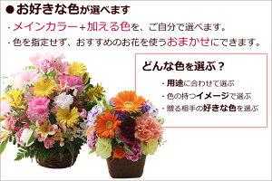 季節の花のアレンジ-色-