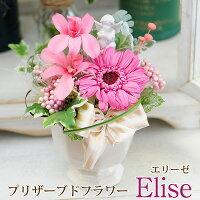 花ギフトプリザーブドフラワーギフト「エリーゼ」花ギフトガーベラ送料無料
