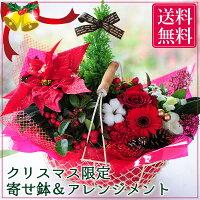 クリスマスプレゼントウィンターギフト/ポインセチアバスケットセット/鉢花/フラワーギフト【楽ギフ_メッセ入力】