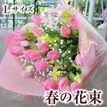 春チューリップ花束スイートピー