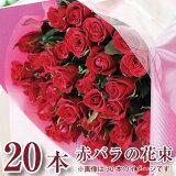 成人式 花束 成人祝 花束 花 プレゼント ギフト 赤いバラの花束20本 薔薇 ばら 誕生日 プロポーズ 年の数 結婚記念日 発表会 送料無料 フラワーギフト バラ 花プレゼント 花ギフト