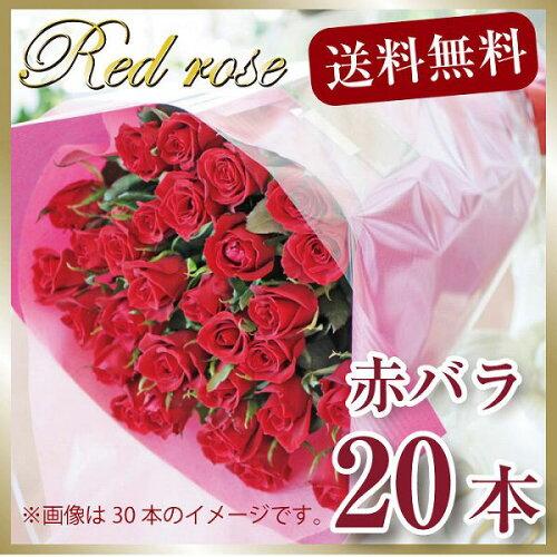 赤いバラ20本の花束 バラ花束ギフト 赤バラ花束 誕生日プレゼント 誕生日花束 赤バラの花束 ...