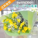 フリージア花束お見舞い・プレゼント・記念日・贈り物・入学祝い・卒業祝い・バレンタインデー・ホワイトデー