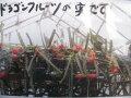 【ドラゴンフルーツ】3.5号苗・多肉植物・果樹苗