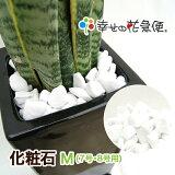 化粧石-M(7号・8号用)|【送料無料/観葉植物/マルチング材/飾り石/インテリアストーン】