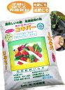 有機肥料 ぼかし肥 すぐ効く【ユキパー】 粉状 12.5kg 1袋 魚かす・カニガラ・粉炭入り ライズ菌で完全発酵 花 野菜 ガーデニング 畑の肥料 家庭菜園 美味しくできる 当社製造品 安心の有機JAS規格別表適合品
