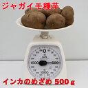 インカのめざめ 種芋【種イモ用】500g(充填時)