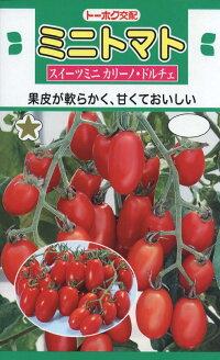 【種子】ミニトマトスイーツミニカリーノ・ドルチェトーホクのたね