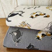 綿麻キャンバス/まったりした猫たち【50cm単位続けてカットします】