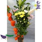 お盆 7月盆 新盆 初盆 仏花とホオズキの切花お盆セット